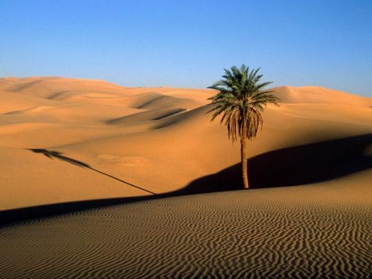 gurun-sahara-afrika
